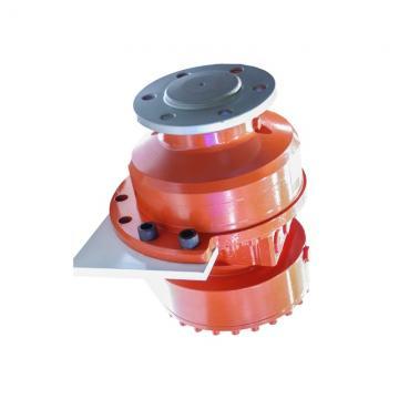 Caterpillar 321DLCR Hydraulic Final Drive Motor
